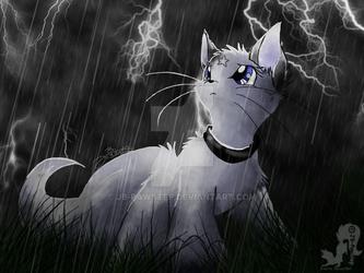 Lightning all around me