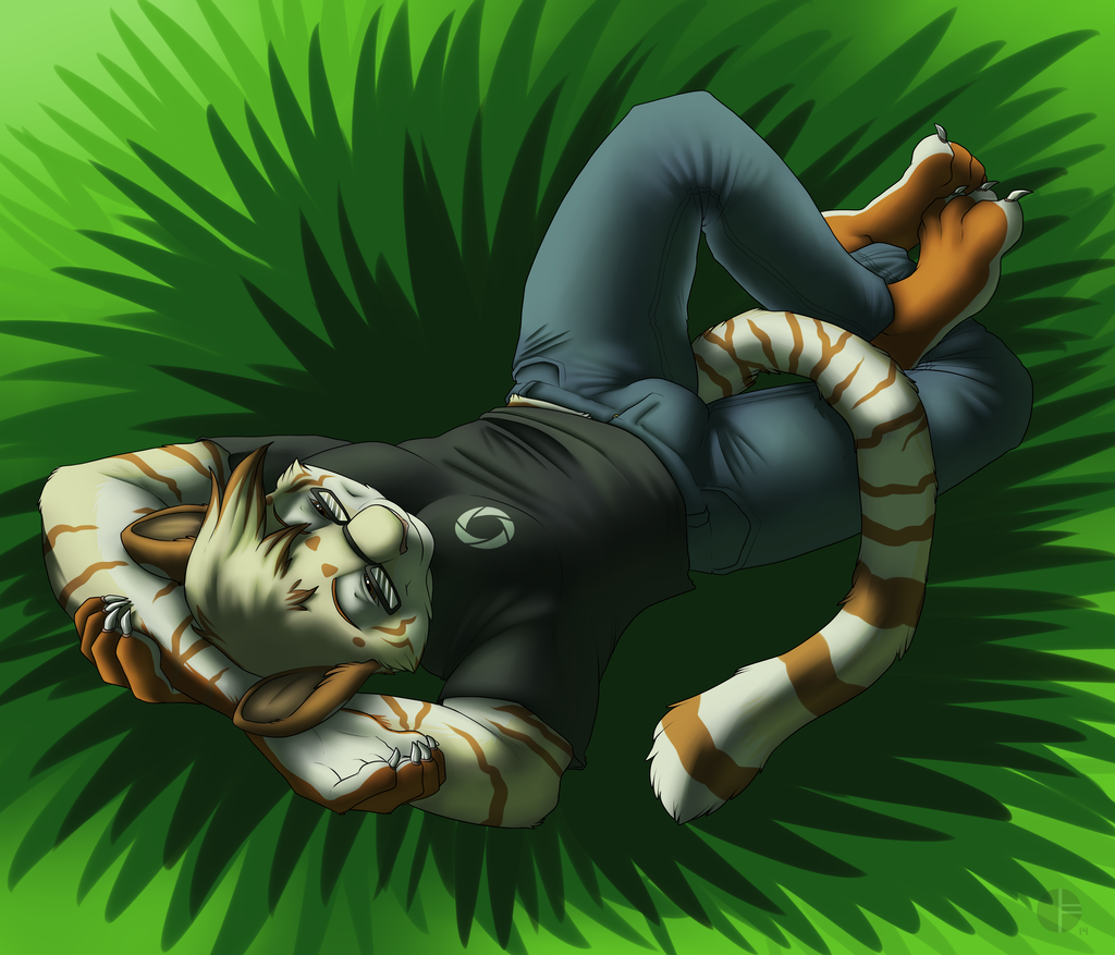 Lazy Summer - Confuzzled