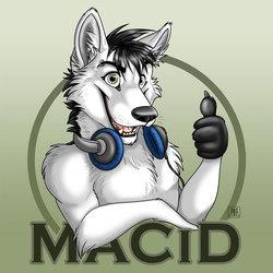 MaCiD commission