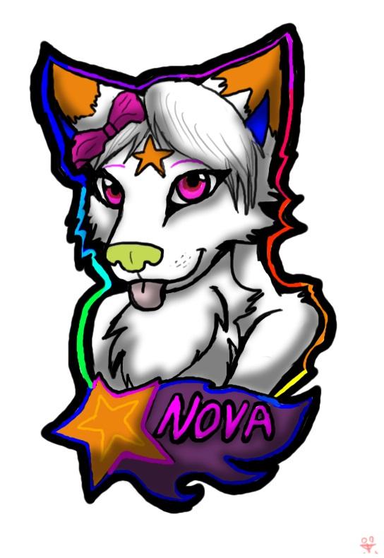 Nova badge for nova