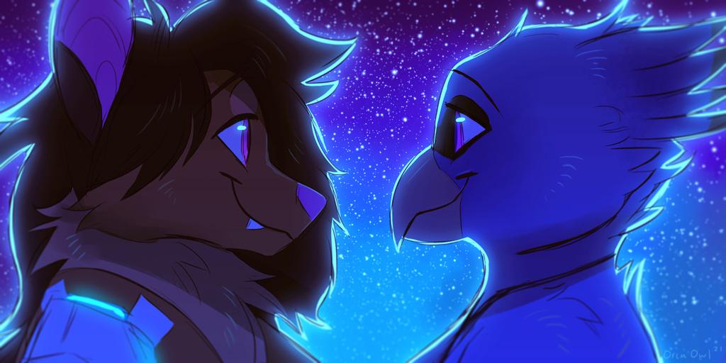 Nighttime Bat + Birb