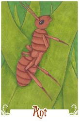 Ant (2014)