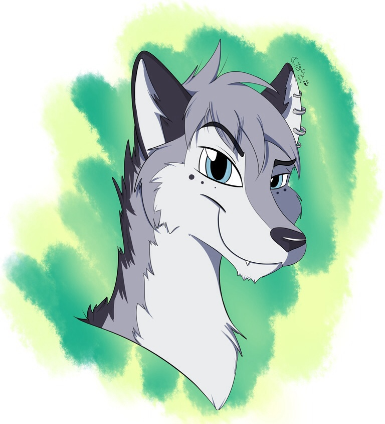 Is a fluffy wolfe