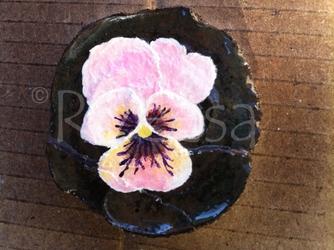 Slag Pansy Flower