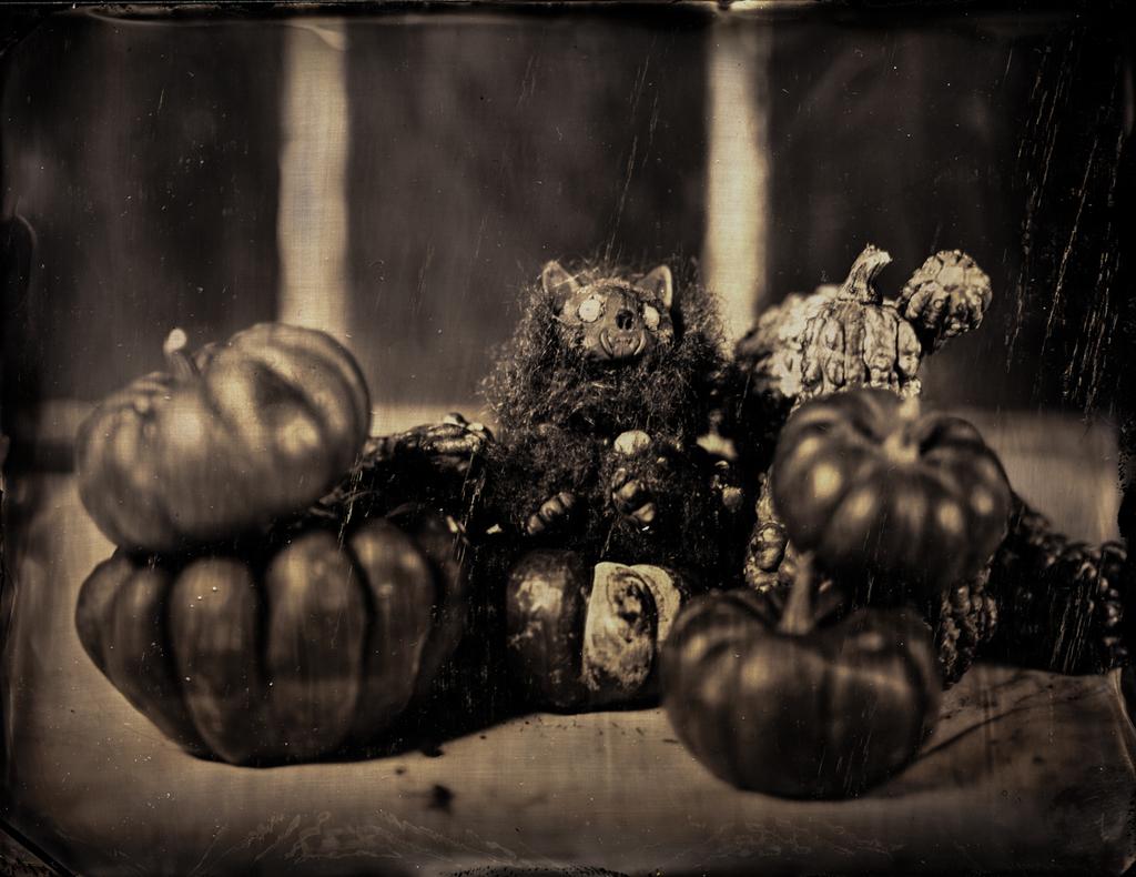 Queen of Gourds