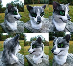 silver tabby cat head ~sold~