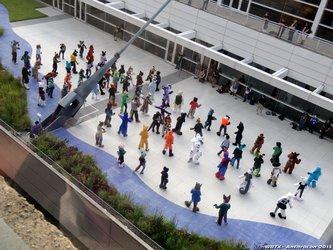 Anthrocon 2013 - Duke's Group Dance (Finally Found You)!