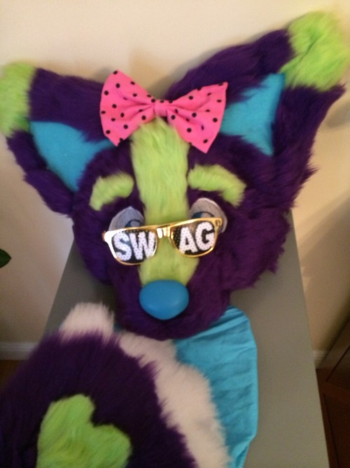 Most recent image: Getting ready for a furmeet!