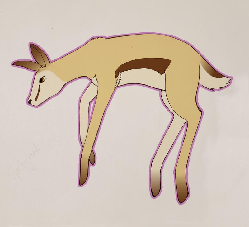 Most recent image: Springbok
