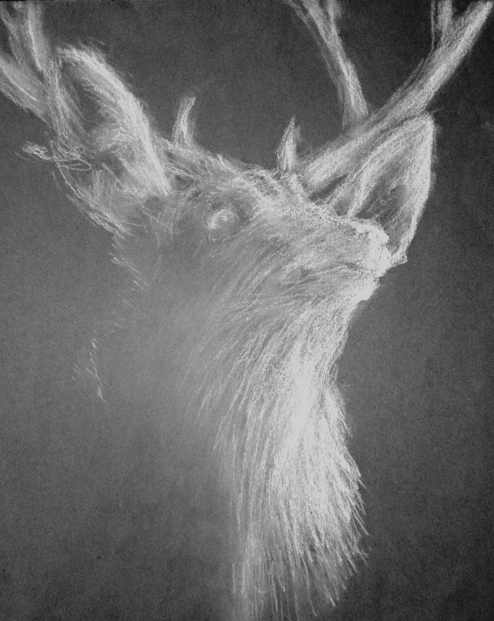 Deer You
