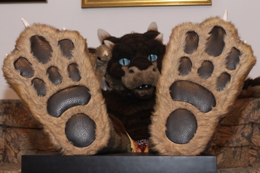 Close up of my footpaws