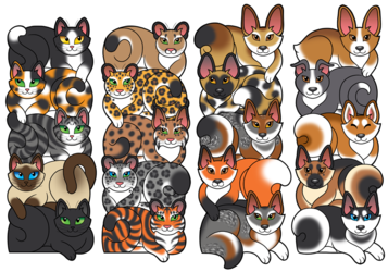 Bookmarks - Cats and Dogs