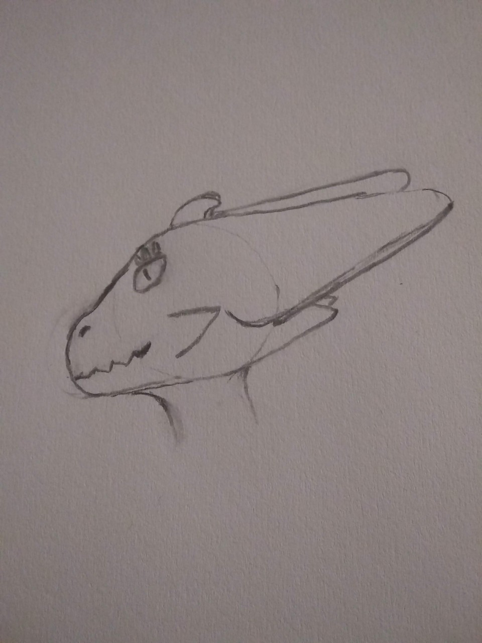Nexii Headshot Sketch