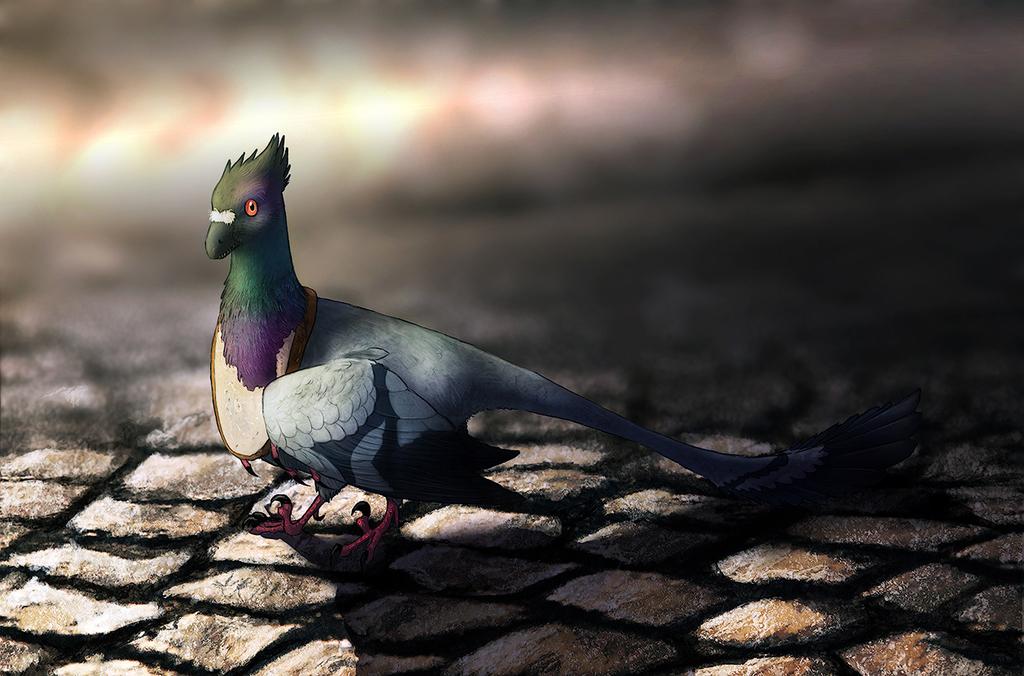 Columbaraptor