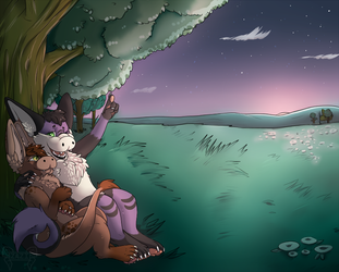 [Commission] Evian and Mewrei: Evening Under The Stars