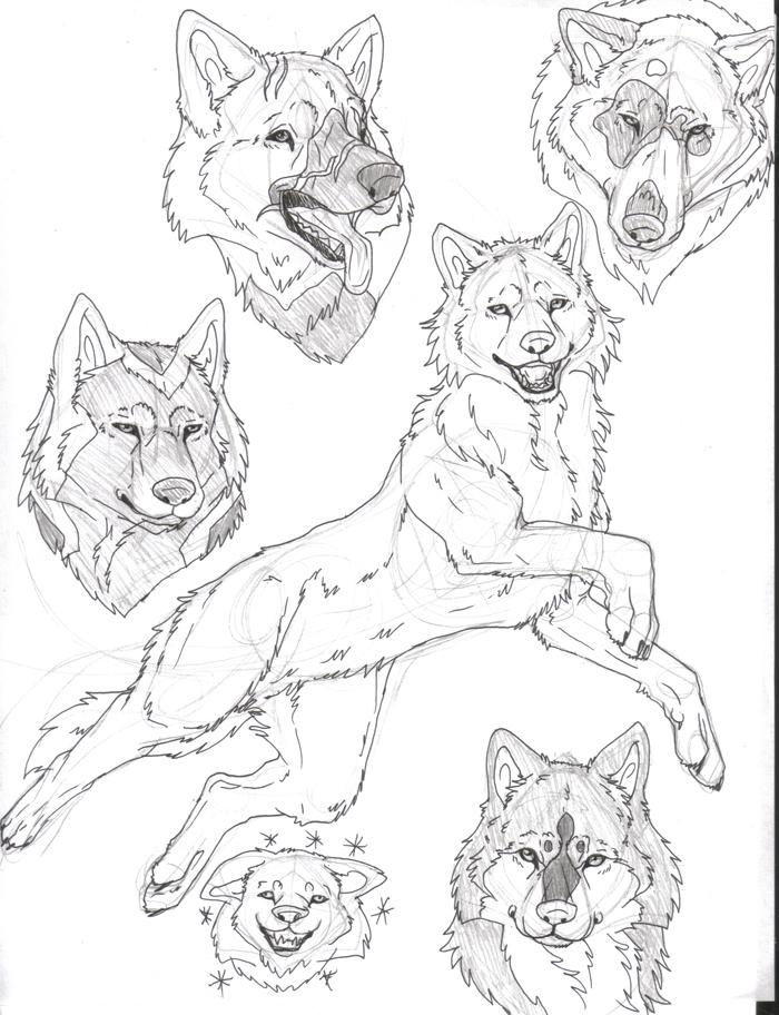 Crap sketches
