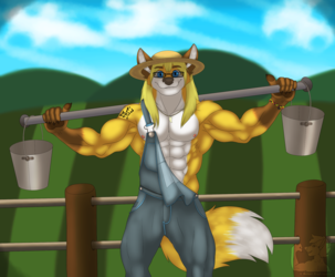Farm Boy Fox :3
