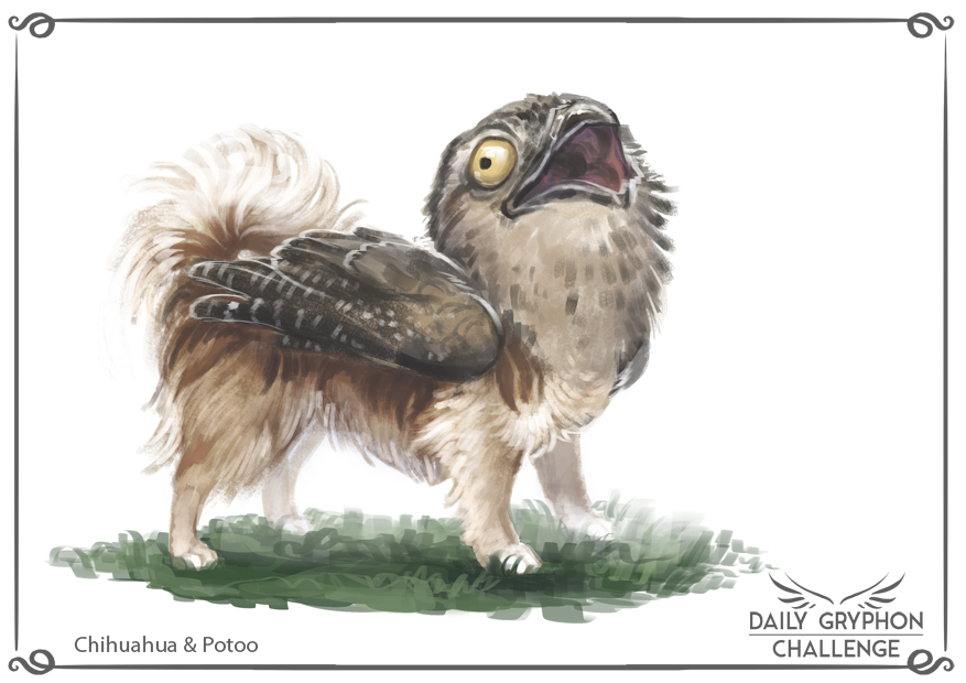 Daily Gryphon Challenge 08: Chihuahua & Potoo