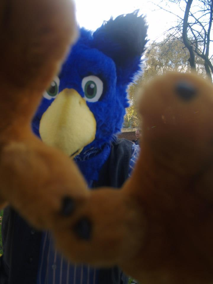 Most recent image: Terrifying gryph attack.