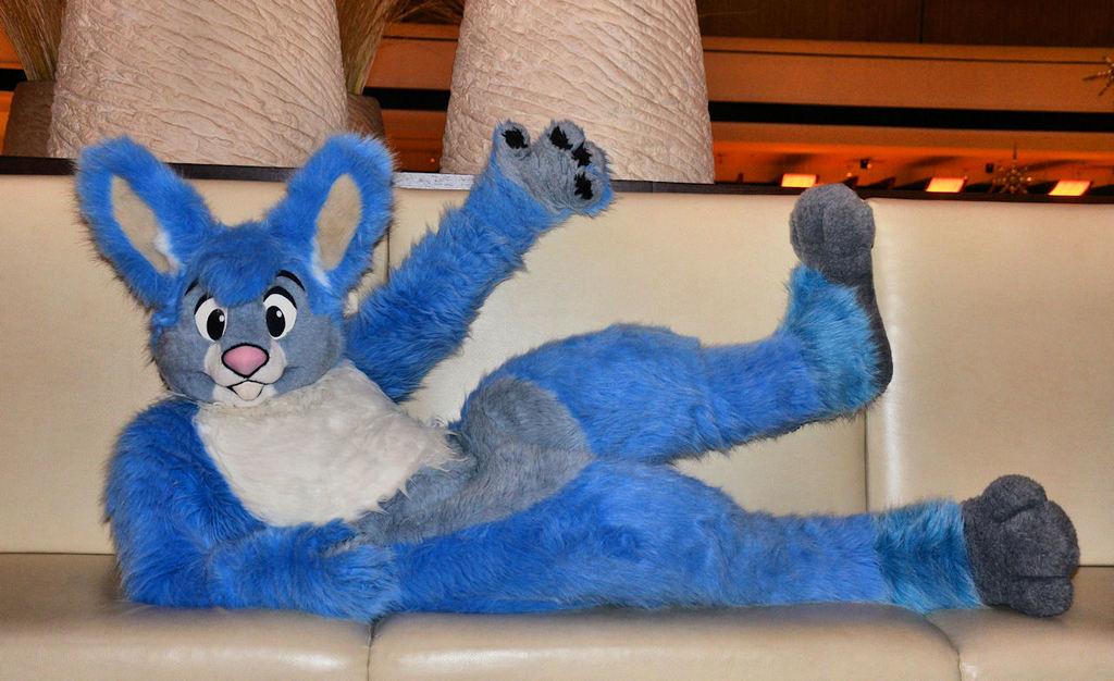 A Bunny on the Sofa