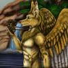 avatar of canis_aureus