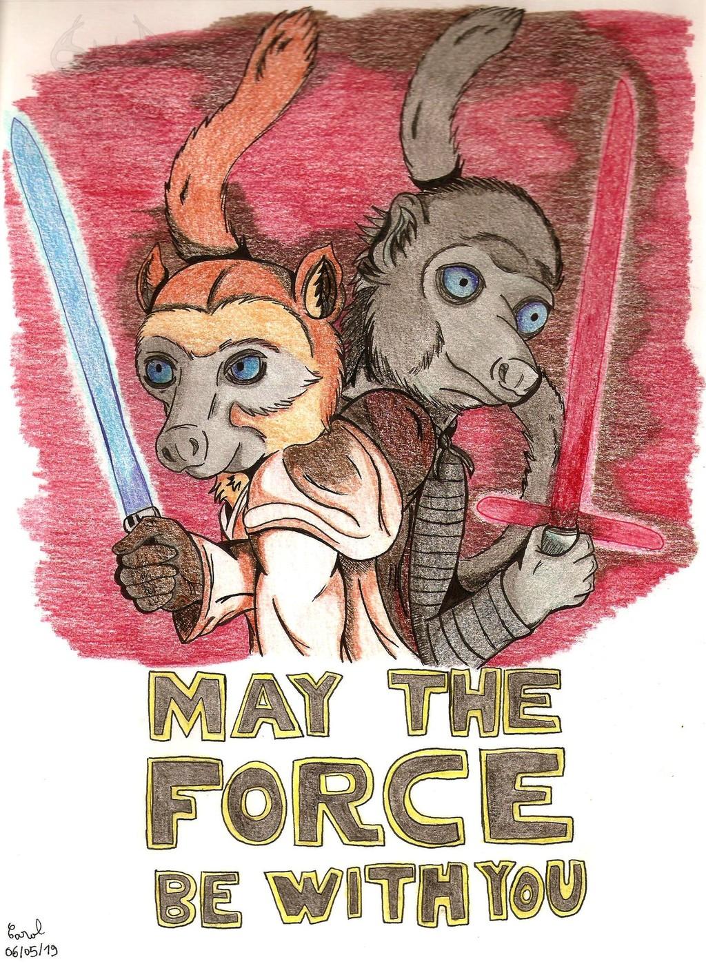 [Fantasy Lemurs] Lemurs of the Force