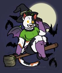 Feline Witch