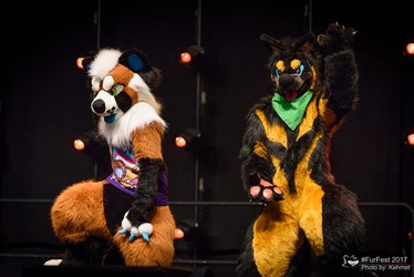 Cause & Effect at MFF2017 Dance Competition