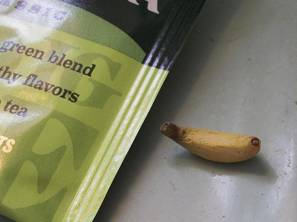 Featured image: tiny banana
