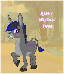 Happy Birthday Tara!