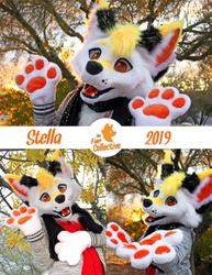 Stella the Fox!