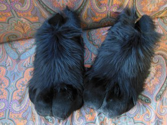 Footpaws!