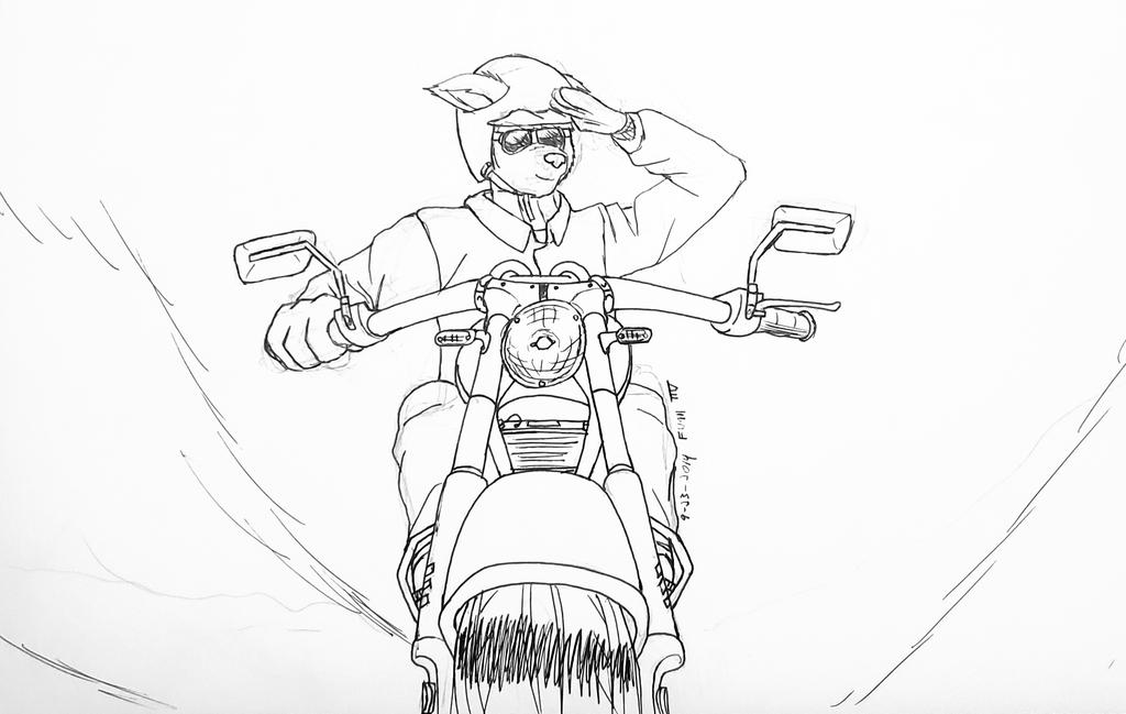Unfinished Bike Sketch