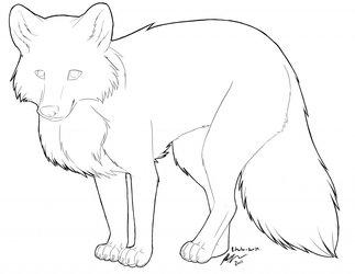 Fox lineart