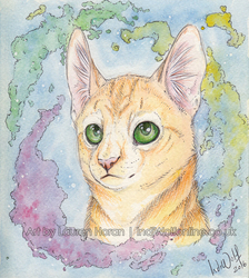 Watercolour Kitty