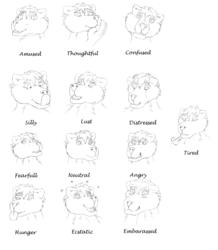 Emotion training