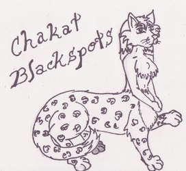 Chakat Blackspots by HollyFox