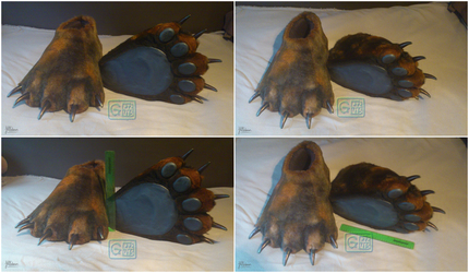 Grizzly Bear Feet Paws