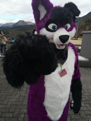 I want you for Fursuit Friday