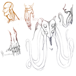 Parite Species Sketches