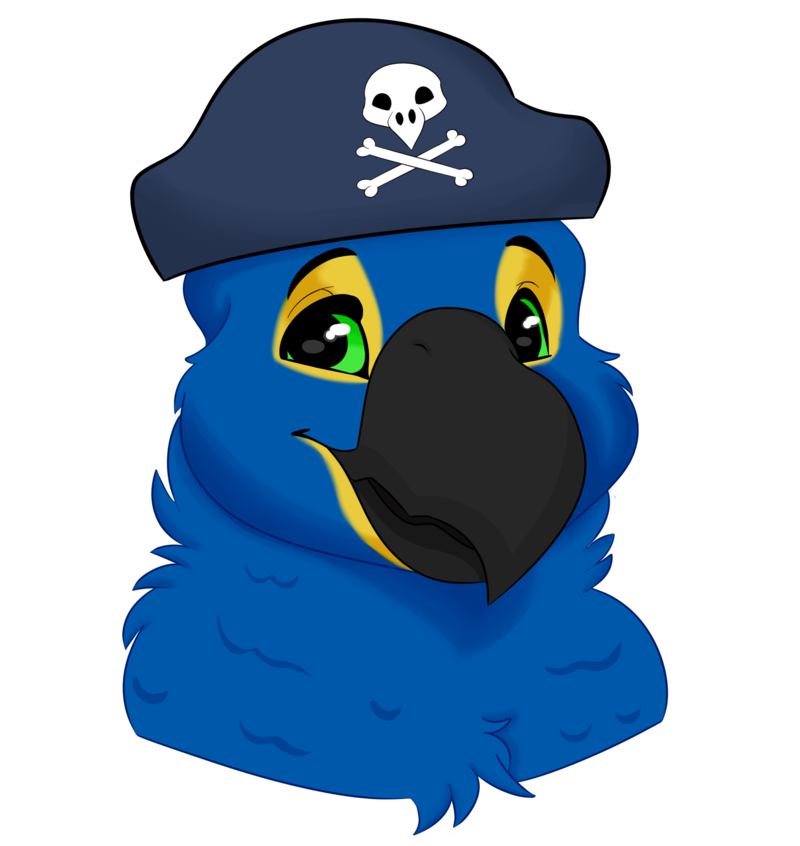 Most recent image: Pirate Birb