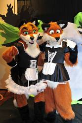 Maid For You Foxes