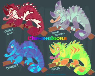 Chromeleon Adoptables