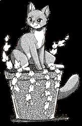 Igirisu in a Christmas Cactus: Redux