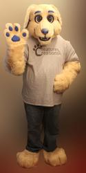 Walter the Yellow Labrador!