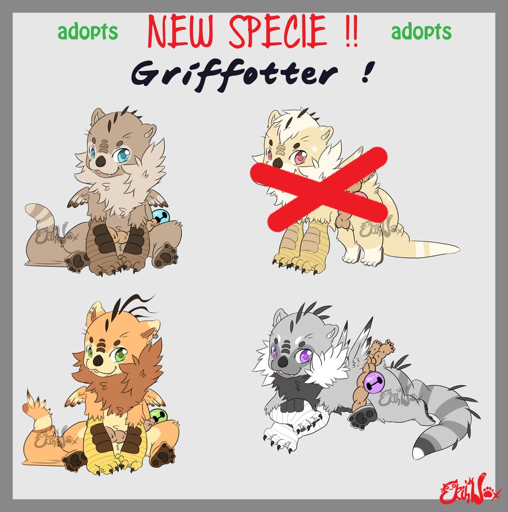 Most recent image: NEW SPECIE - Griffotter ADOPTS