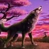 avatar of Raidenwolf_sonata