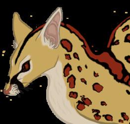 Angolian Blotched Genet