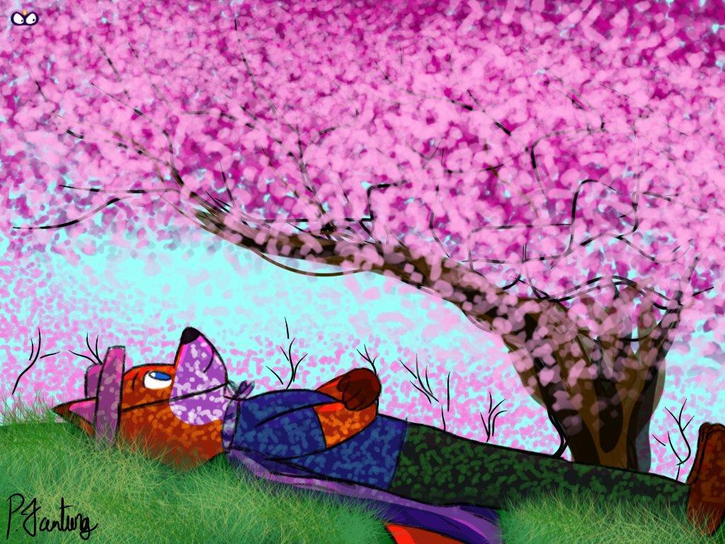 Kaiketsu Mike watches cherry blossoms