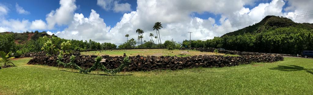 Hawaiian Wailau Temple